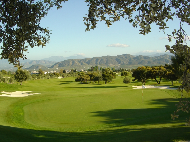 One of the beautiful greens at Lauro Golf