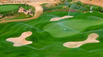 Desert Springs golf green