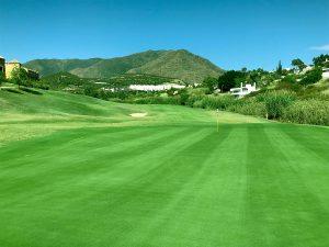 Azata Golf Course Green